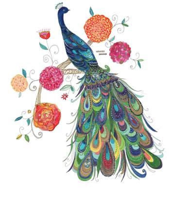 13. Kim Anderson Artist & Illustrator Splendid Peacock